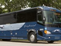 Greyhound sale: Get up to 50% off fares