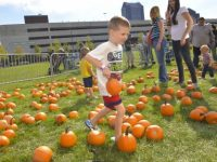 Harvest Fair at Columbus Commons