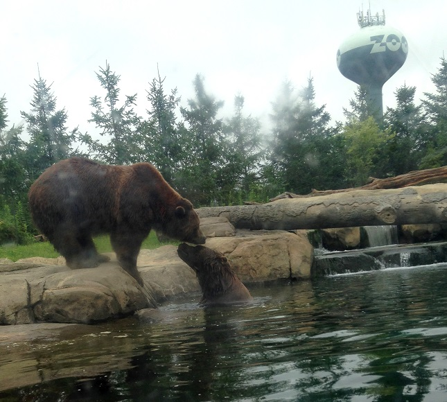 Columbus Zoo Tickets And Discounts