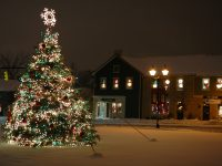 Dublin Christmas Tree Lighting Ceremony
