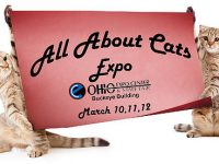 All About Cats Expo and Columbus Kids Winter Fun Festival