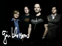 Free Gin Blossoms Concert