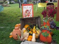 Stratford Ecological Center Fall Harvest Fair