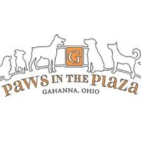 paws in the plaza