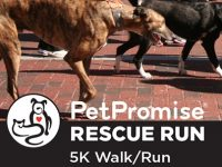 PetPromise Rescue Run and Walk