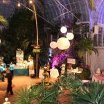 Franklin Park Conservatory Wedding Showcase