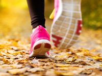 Get fit: Spring Metro Park Hikes