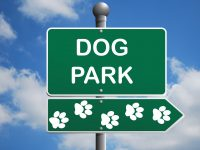 The best Dog Parks in Columbus