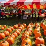 Upper Arlington Fall Fest