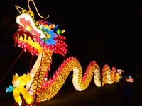 Experience the magic of Dragon Lights Columbus