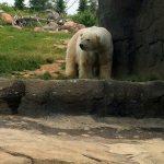 Columbus Parent Camp & Activities Expo at the Columbus Zoo