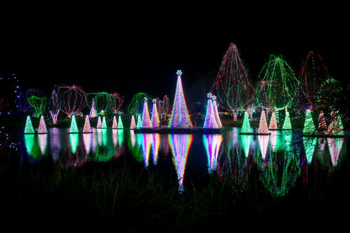 Experience Holiday Magic of Wildlights at the Columbus Zoo and Aquarium