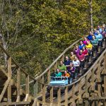 Visit Kings Island; no reservations required
