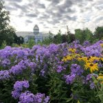 Franklin Park Conservatory Free Community Day and Chihuly Nights plus other discounts
